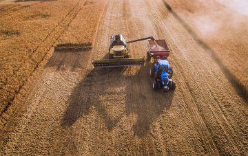 «Россельхозбанк» поможет найти работу в сельском хозяйстве